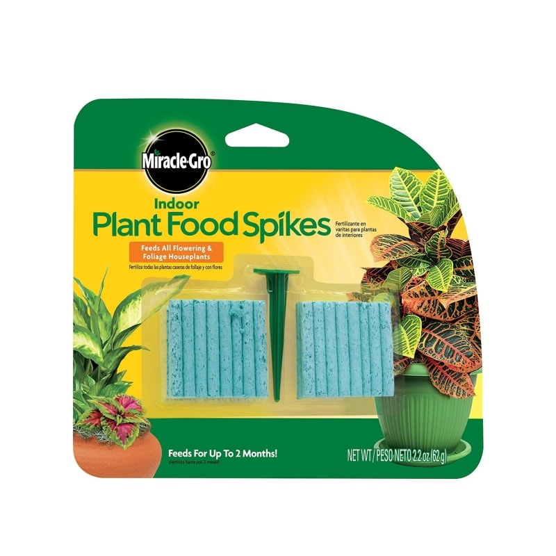plant food spikes