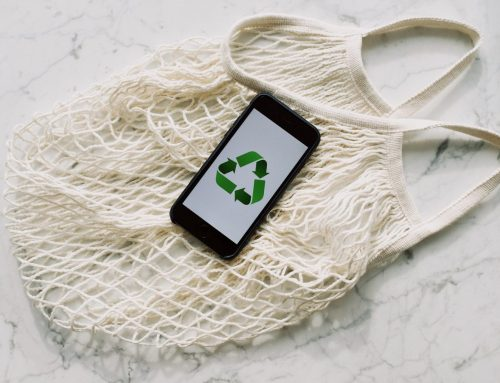 17 Eco-Friendly Products You Should Be Buying Instead