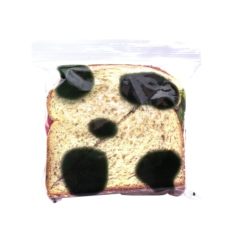 anti-theft sandwich bag